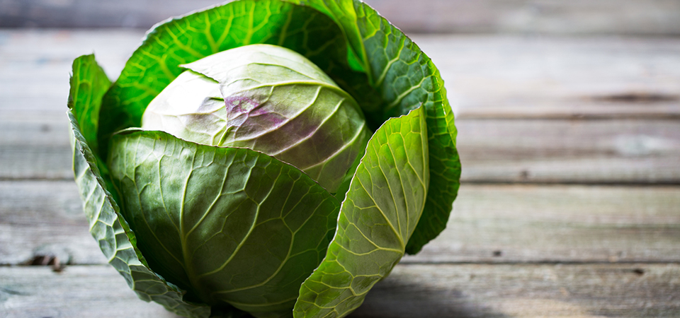 All You Need To Know: Cabbage