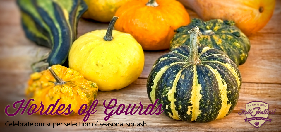 Hordes of Gourds