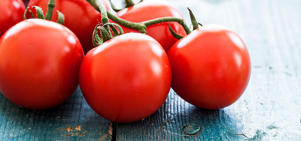 All You Need To Know: Tomatoes