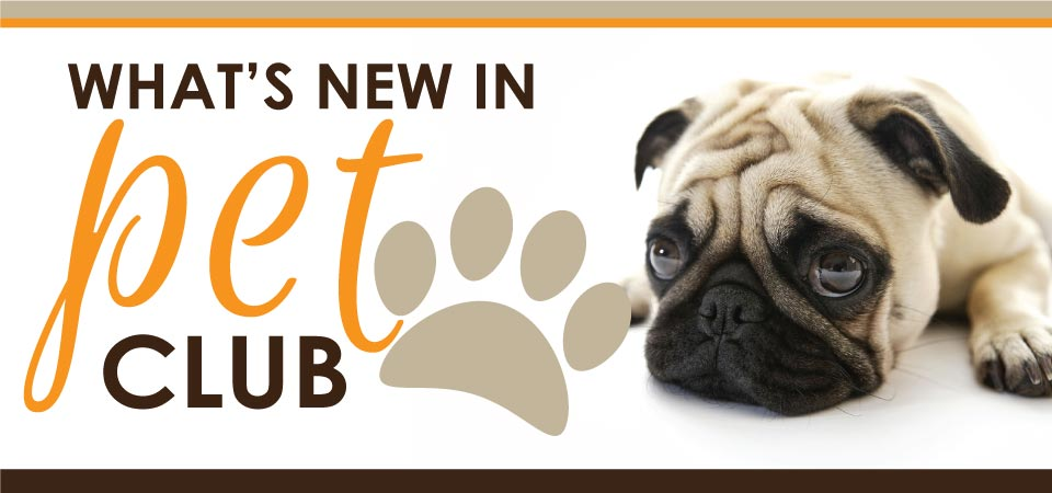 Pet club header image