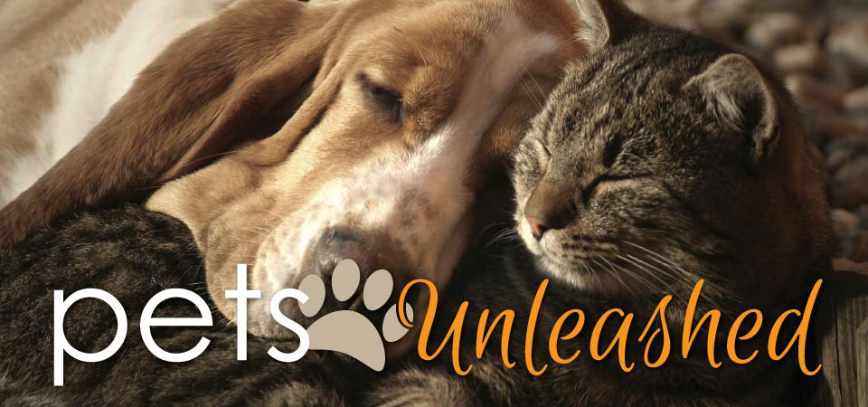 Pets Unleashed
