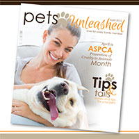 Pets Unleashed flyer